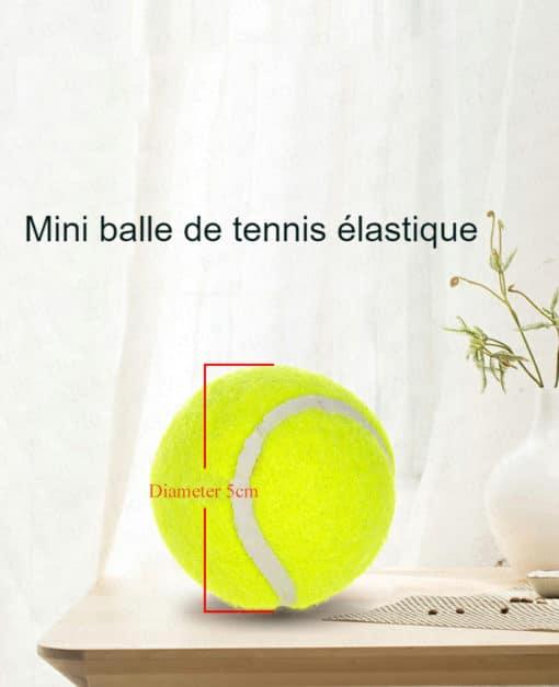 Mini balle de tennis pour lanceur de balles