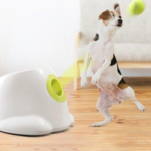 Lanceur de balles automatique pour les chiens