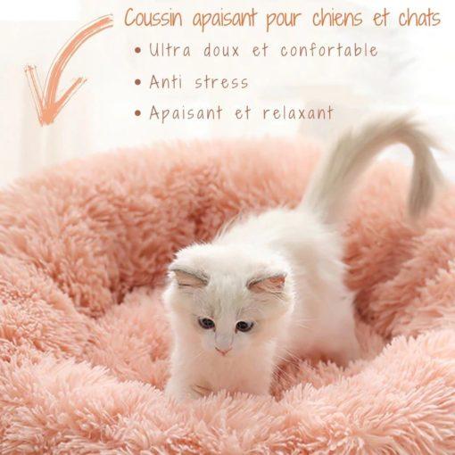 Coussin apaisant chaton