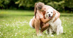 Êtes-vous prêt à avoir un chien