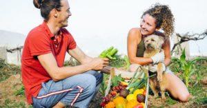 Fruits et légumes que votre chien peut ou ne peut pas manger
